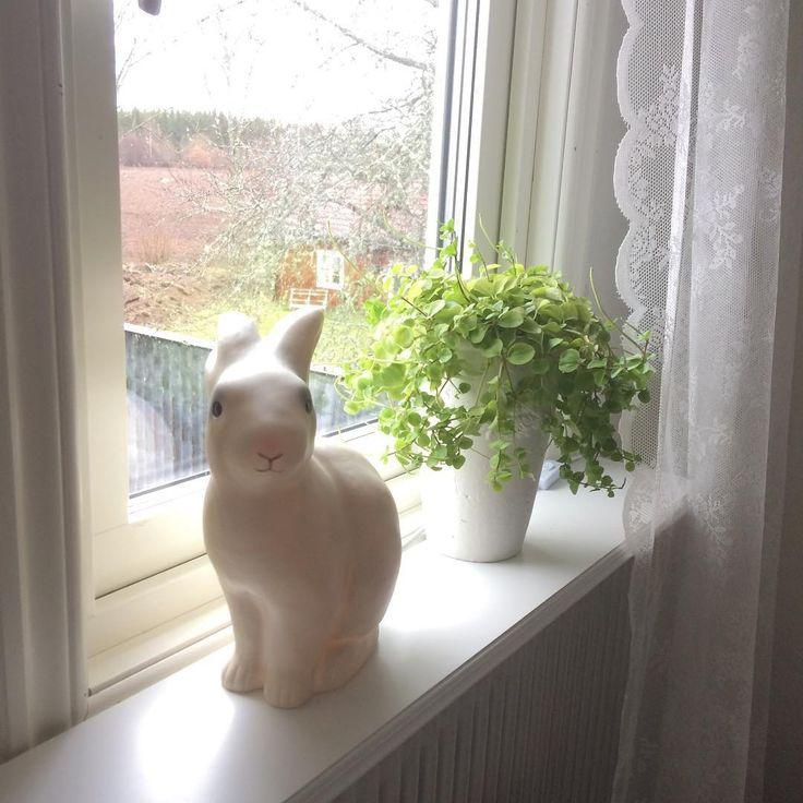 Leklyckan kaninlampa #barnrum #bunnyinthewindow
