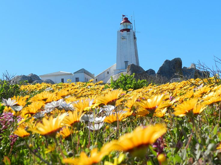 Cape Columbine Lighthouse, Paternoster, South Africa