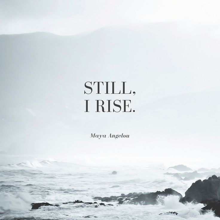 Still I rise. - Maya Angelou                                                                                                                                                                                 More