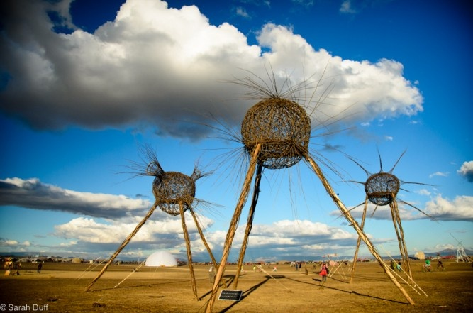 would have loved to be there  Afrikaburn 2013