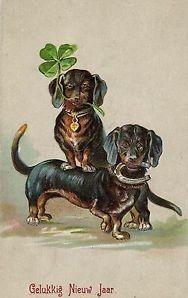 Vintage dachshund postcard - New Year