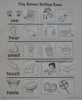 A, Bee, C, Preschool: Cinco de Mayo and Five Senses Unit