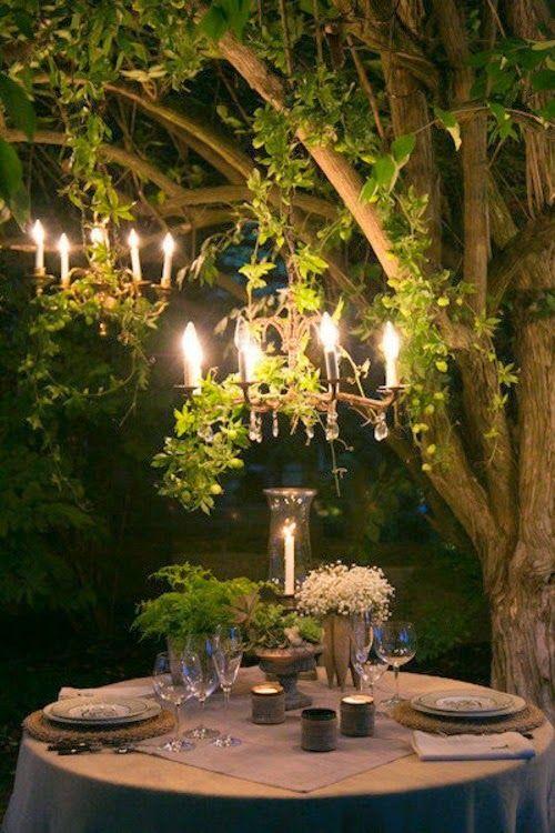 cosa ve ne pare di una cena romantica sotto ad un albero illuminato dalla luce di uno splendido chandelier?