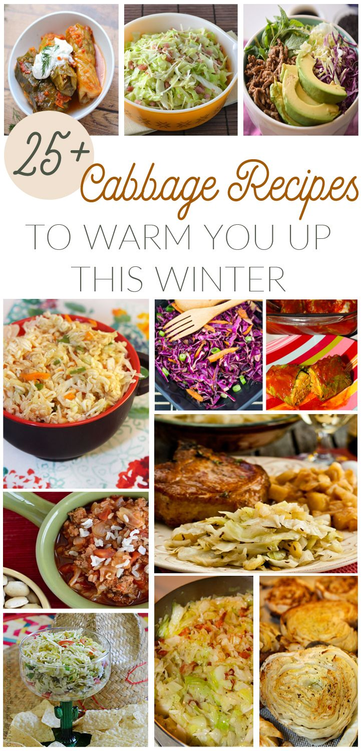 25+ Cabbage Recipes to Warm You Up This Winter