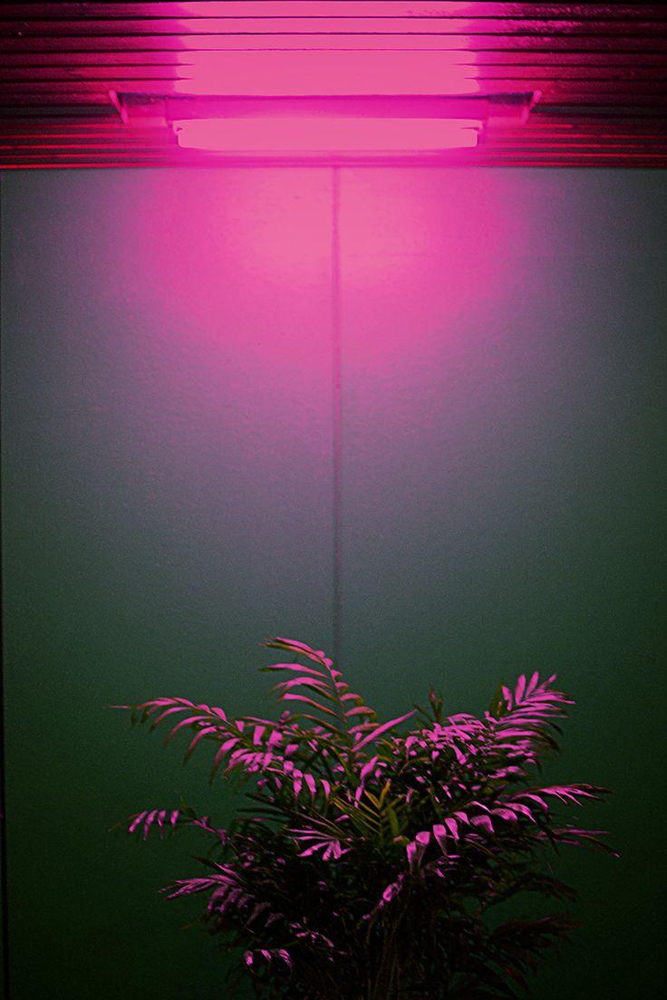"aportalofcolors: "" ۞ colors ۞ """