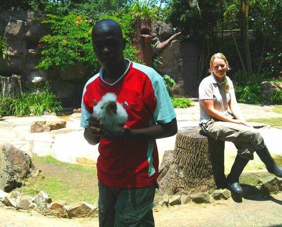 Durban bird park... This is a baby owl