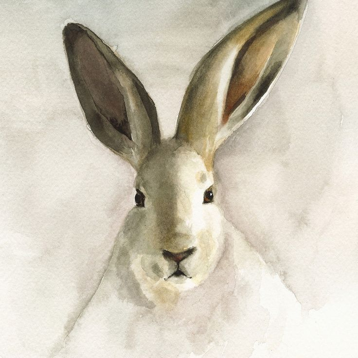 cottage decor-Rabbit Watercolor-nature-neutrals, cream, woodland,shabby chic, french country, nursery decor. $20.00, via Etsy.