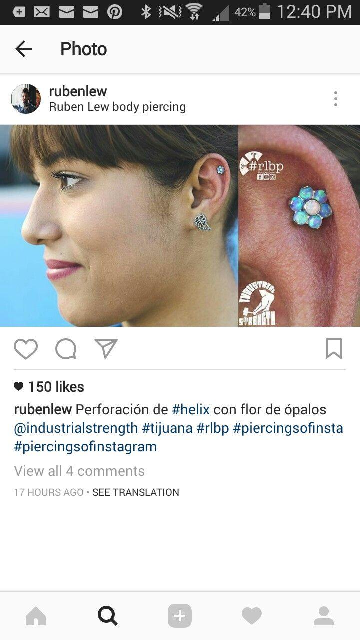 Nose piercing over 40  Pin by shemariah flora on piercings u tattoos  Pinterest  Piercing