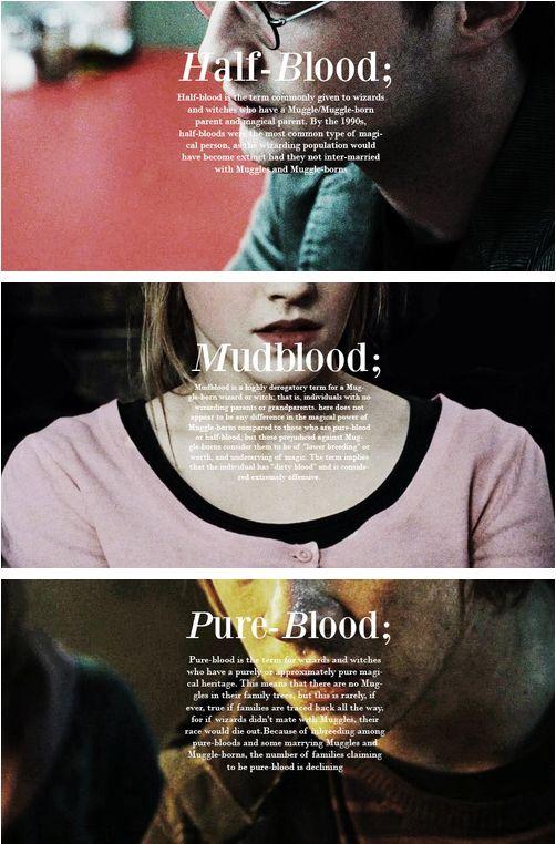 Harry Potter- Half-Blood, Hermione Granger- MUGGLEBORN and Ron Weasley…