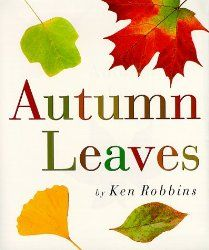 The Best Books to Take on a Leaf Hunt - Edventures with Kids