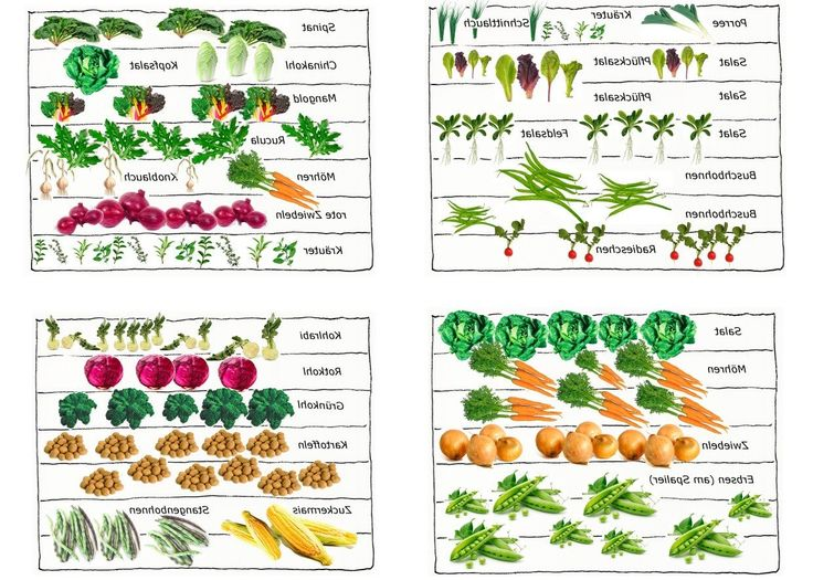 17 besten Garten Bilder auf Pinterest | Gardening, Ideen und ...