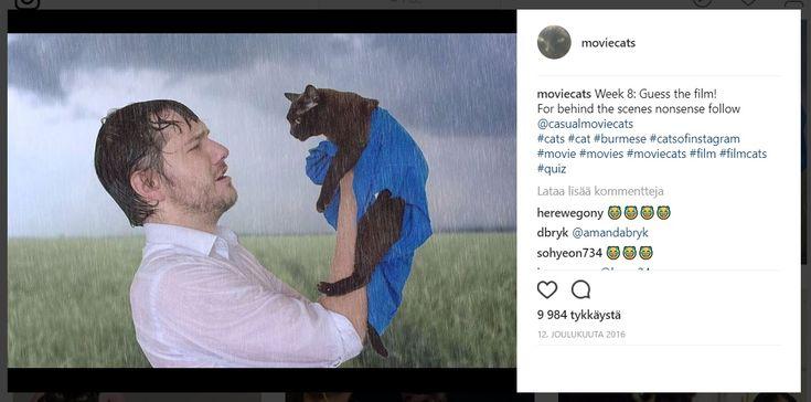 Mies+matkii+tunnettuja+elokuvakohtauksia+kissansa+kanssa+–+katso+hauskat+kuvat