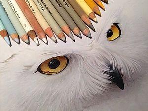 Невероятно реалистичные карандашные рисунки от Карлы Миалинн - ВыТворяй! - Ярмарка Мастеров http://www.livemaster.ru/topic/457285-neveroyatno-realistichnye-karandashnye-risunki-ot-karly-mialinn