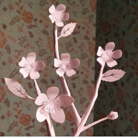 【cajsas_papper】さんのInstagramをピンしています。 《#papper #paper #бумага #art #cutout #paperart #paperartist #cherryblossoms #körsbär #flowers #paperflowers #papperskonstnär #papperskonst》