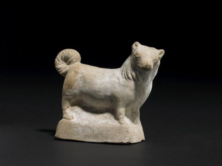 A terracota figurine of the Melitan or miniature spitz-type dog. Note its fluffy coat, pointed triangular ears, clean fox-like face, and ruffed neck. Made in Campania and found at Ruvo. Roman, 1st century BC - 1st century AD. Currently at the British Museum.