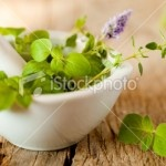 Apprendre à se soigner par les plantes