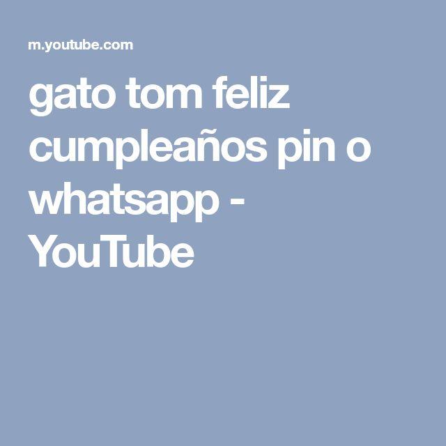 gato tom feliz cumpleaños pin o whatsapp - YouTube