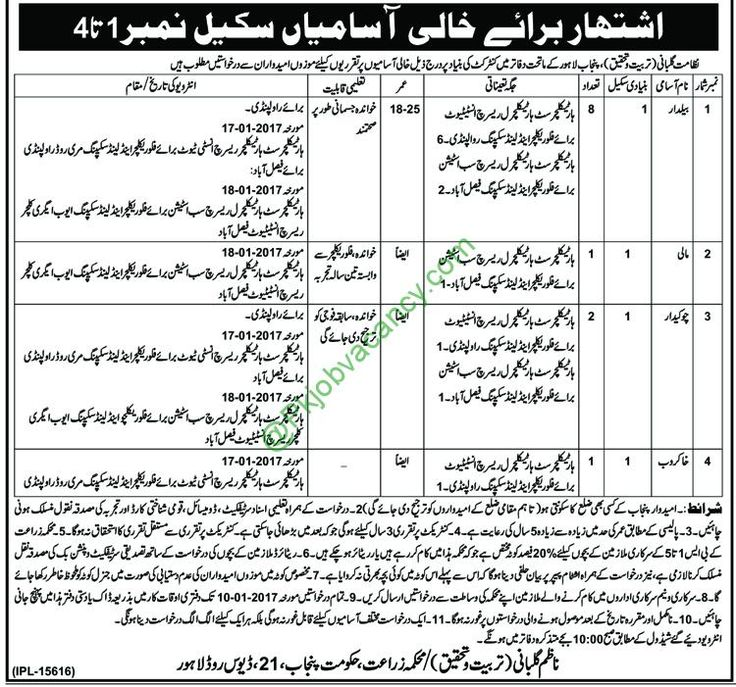 Jobs In Punjab Agriculture Department 30 December 2016