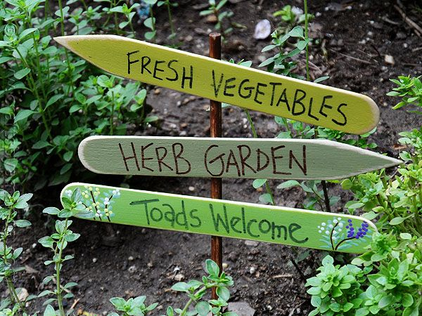 herb garden sign toads welcome