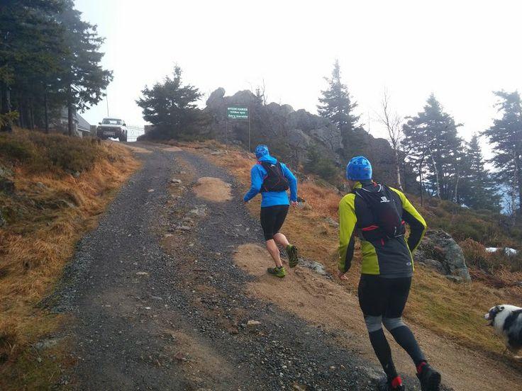 Przyjemna 29-kilometrowa trasa biegowa z Antoniowa na Wysoki Kamień i z powrotem. Trasa wiedzie w większości szutrowymi drogami. Od Rozdroża Izerskiego pnie się do góry coraz węższymi ścieżkami. W schronisku można przysiąść przy ciepłym kaflowym piecu.