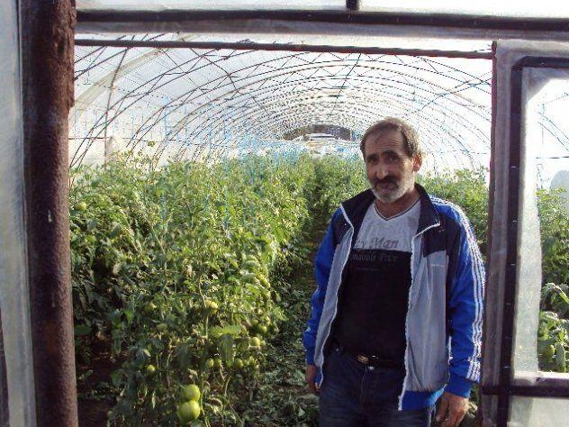 Khoren from Ukraine, greenhouse lord