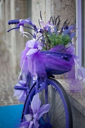What a Beautiful Picture... Purple Bicycle Wheel with Purple Netting surrounding a Purple Bouquet of Flowers...
