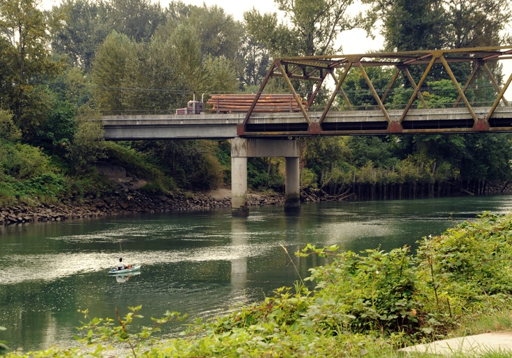 33 best images about snohomish county wa on pinterest for Snohomish river fishing