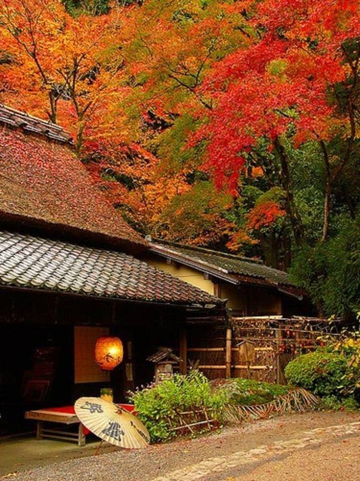 TORIMOTO - KYOTO - JAPAN