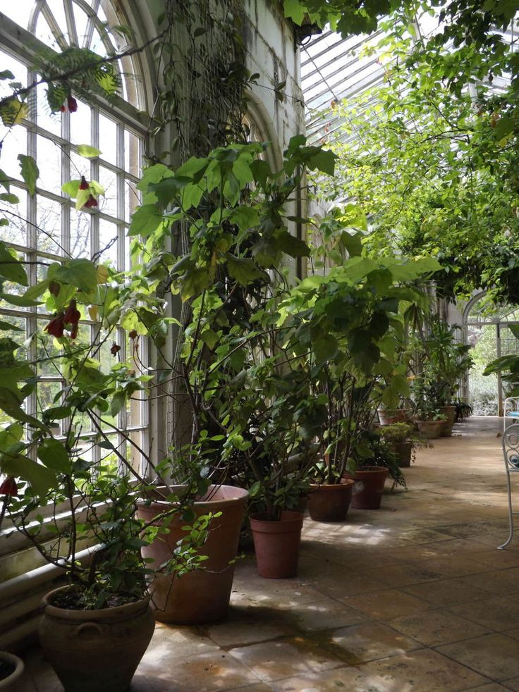 The Orangery, Mapperton Gardens, Dorset.