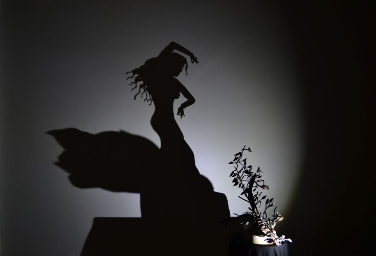 andalusian olive tree - flamenco dancer shadow...title ''Dance me to the end of love''