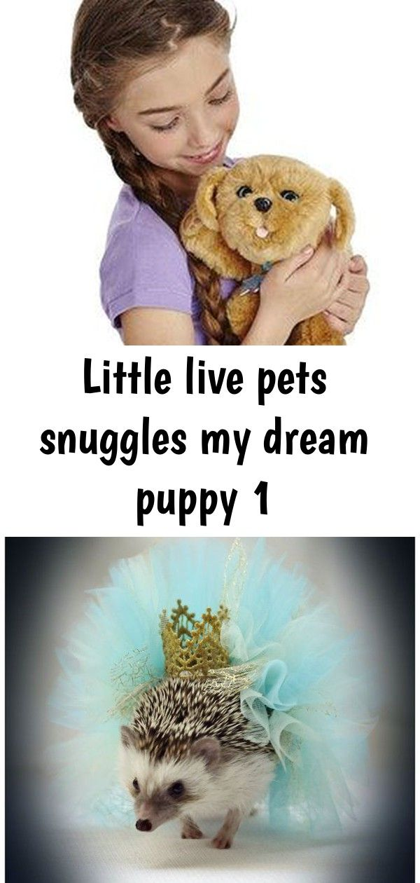 Little Live Pets Snuggles My Dream Puppy Toy Review These Super