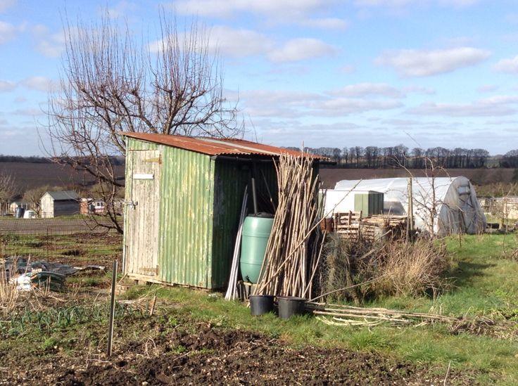 Pru's shed - always beautiful