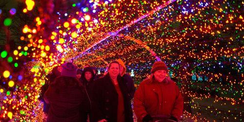 Botanical Gardens Garden Glow - Need Advance tickets $18 per person