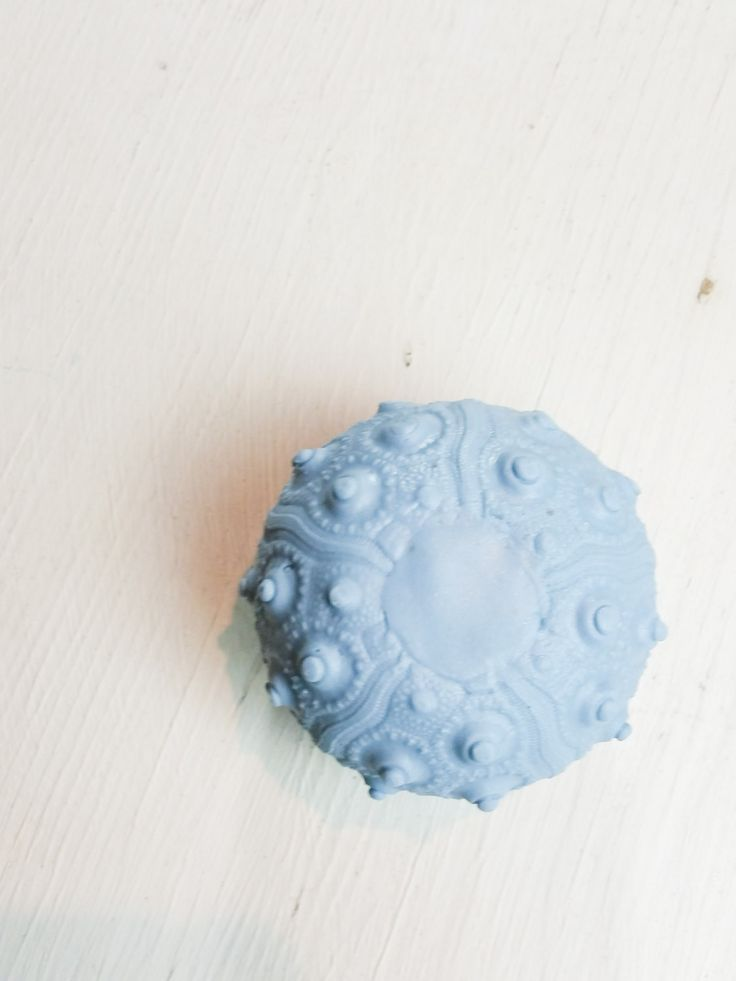 Juniperberry & Sea Salt Sea Urchin Shea Oatmeal Soap