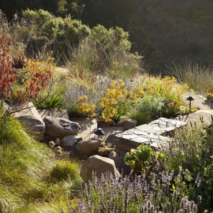 46 Best Rock Garden Images On Pinterest
