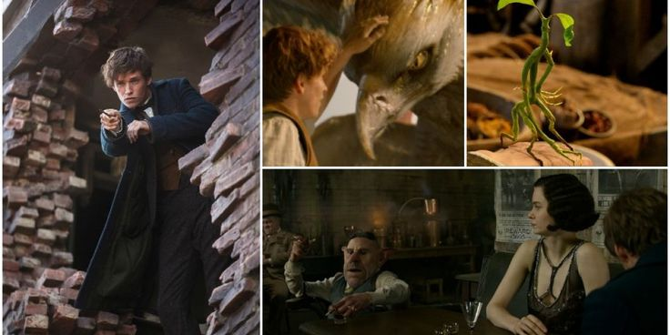 'Fantastic Beasts' is magisch goed: dit is wat je mag verwachten van de nieuwe Harry Potter-film