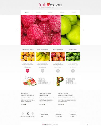 Template 45529 - Fruit Export Javascript Animated Website Template with Homepage Slider, Product Gallery and Slideshow, Drop-down Menus