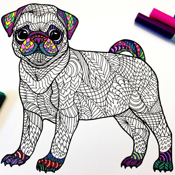 Pug Puppy Pdf Zentangle Coloring Page Puppy Coloring Pages Coloring Pages Pugs