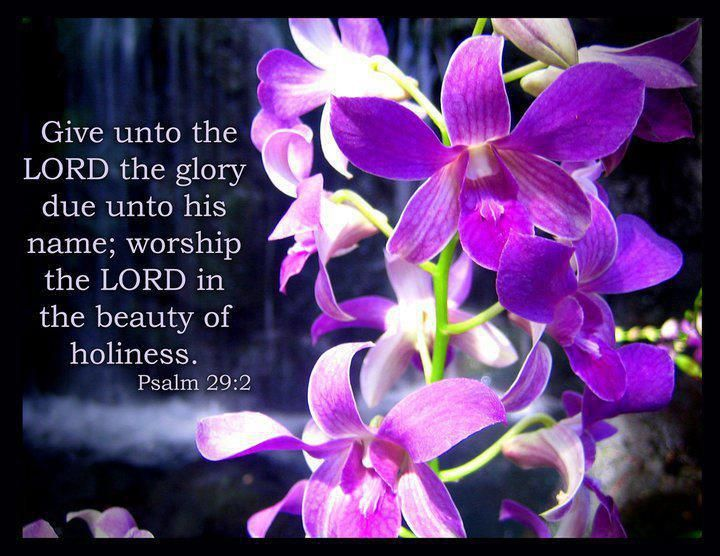 Psalm 29:2  New King James Version (NKJV)  2 Give unto the Lord the glory due to His name;  Worship the Lord in the beauty of holiness.