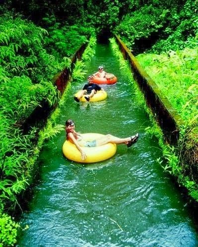 Beautiful Hawaii -Canal Tubing In Hawaii