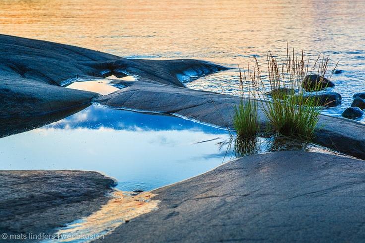 Grass straws in the Swedish archipelago | Mats Lindfors | Webbkusten Photography