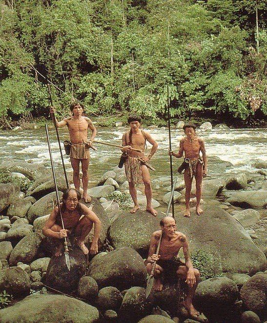Dayak Uud Sio, West Kalimantan - Indonesia