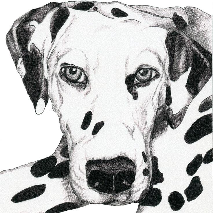 Pet Portraits Paintings Dogs