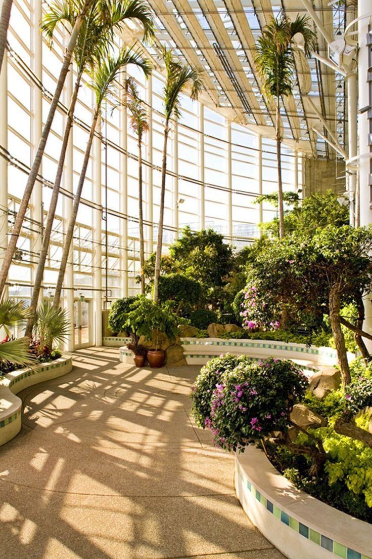 Phipps Conservatory And Botanical Gardens Tropical Forest Addition In Pittsburgh United States