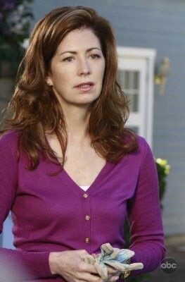 Apologise, but, Dana delany desperate housewives