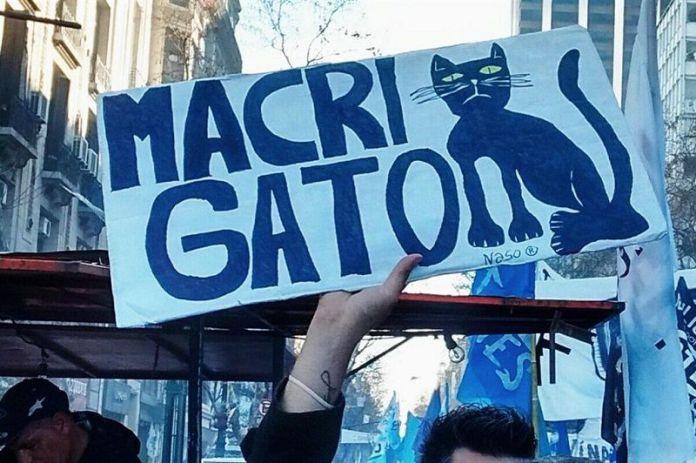 macri-gato