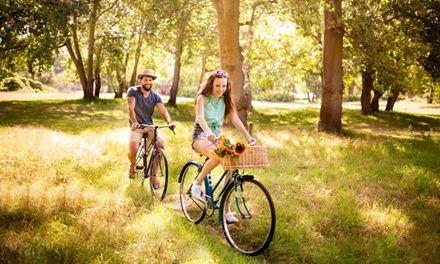Beaune Vélo Tour (Guy Delepau) à Beaune : Balade à vélo et dégustation au cœur des vignobles: #BEAUNE 34.90€ au lieu de 70.00€ (50% de…
