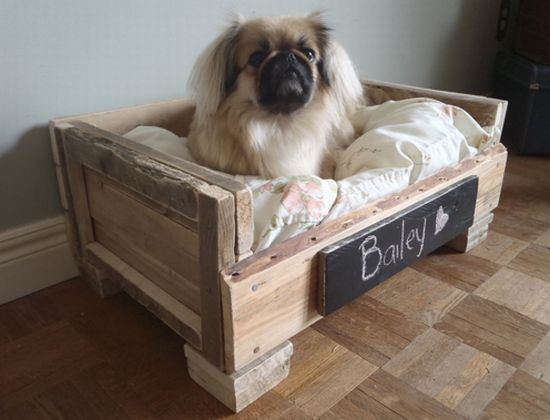 1000+ images about diy animal products on pinterest, Innenarchitektur ideen