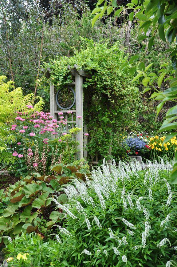 Romantic cottage garden...wonderful textures, depth, and color