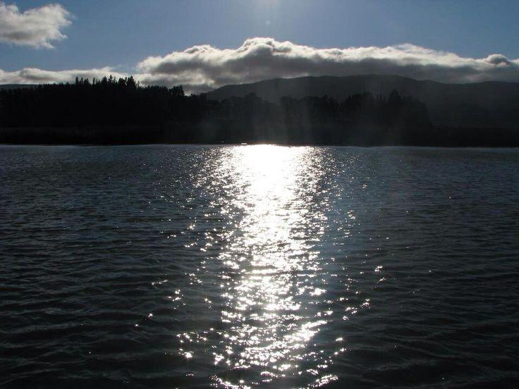 Río Cruces - Valdivia By Beatriz Jofre